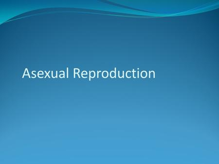 Asexual Reproduction. Single parent – complete copy of DNA Offspring is identical to parent Prokaryotes Advantages: Disadvantages:
