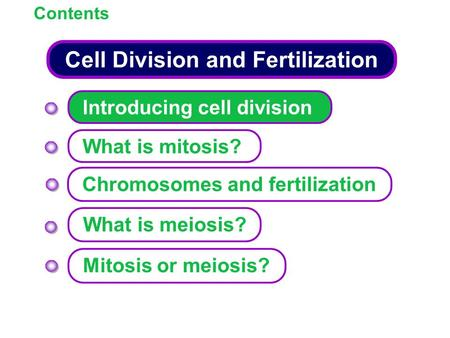Cell Division and Fertilization Contents Introducing cell division What is mitosis? What is meiosis? Mitosis or meiosis? Chromosomes and fertilization.