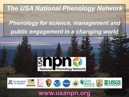 Www.usanpn.org The USA National Phenology Network Phenology for science, management and public engagement in a changing world.