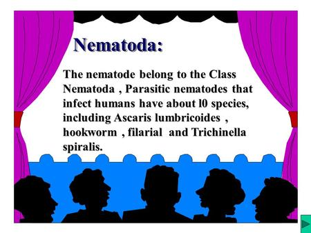 Nematoda: Structure of the adult : 1.Nematodes are generally elongate, cylindrical, and tapered at both ends. 2. The basic body design is a tube within.