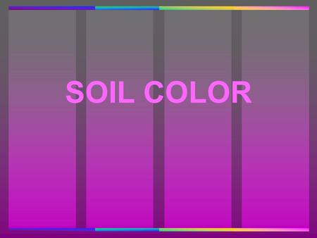 SOIL COLOR. DETERMINANTS OF SOIL COLOR SOIL COLOR DETERMINANTS OF SOIL COLOR 1. Parent Material 2. Vegetation Prairie vs. Forest 3. Age 4. Topography.