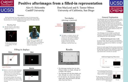 Positive afterimages from a filled-in representation Bleaching flash Filling-in displays Summary Test display (afterimage is perceived) Results White The.