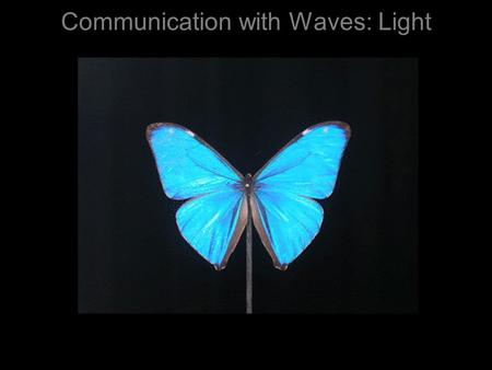 Communication with Waves: Light. The electromagnetic spectrum =  Humans Insects & Birds Snakes.