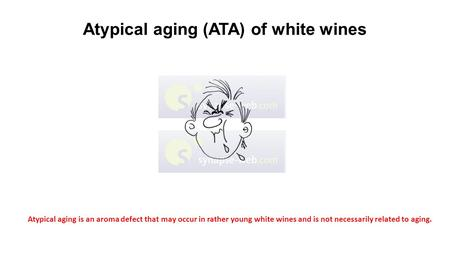 Atypical aging (ATA) of white wines Atypical aging is an aroma defect that may occur in rather young white wines and is not necessarily related to aging.