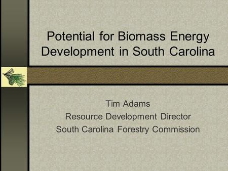 Potential for Biomass Energy Development in South Carolina Tim Adams Resource Development Director South Carolina Forestry Commission.