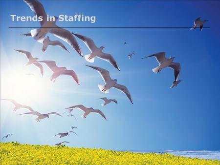 Trends in Staffing. 2 Pragya What will we cover today… Recent Trends in Recruitment  Outsourcing  Poaching  E-recruitment  Big Data Analytics  Alternative.
