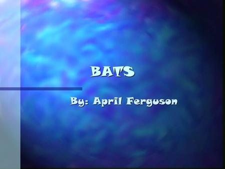 BATS By: April Ferguson. Appearance n Bats are small. n Their bodies are mouselike. n Their faces are wrinkled. n Their claws are gasping, ears pointed.