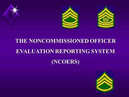 THE NONCOMMISSIONED OFFICER EVALUATION REPORTING SYSTEM (NCOERS)