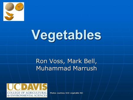 Photos courtesy UCD vegetable RIC Vegetables Ron Voss, Mark Bell, Muhammad Marrush.