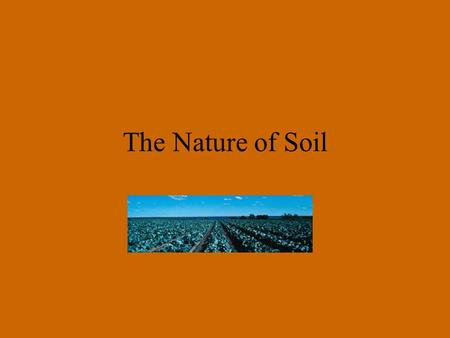 The Nature of Soil. there is an increasing demand for food and an increased pressure on agricultural systems which includes soil use and management.