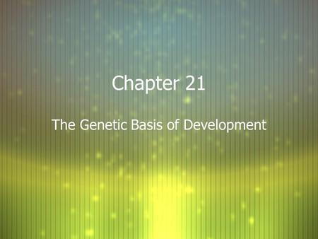 Chapter 21 The Genetic Basis of Development. Zygote and Cell Division F When the zygote divides, it undergoes 3 major changes: F 1. Cell division F 2.