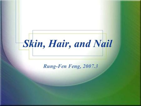 Skin, Hair, and Nail Rung-Fen Feng, 2007.3. Functions of the Skin Protection Sensory perception Temperature & blood pressure regulation Vitamin synthesis.