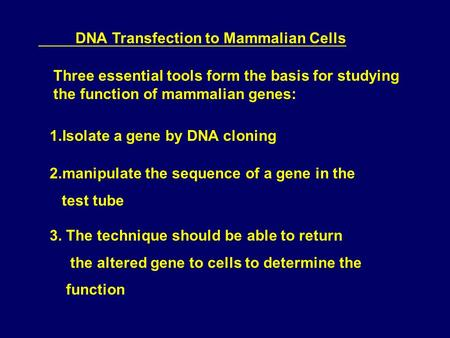 DNA Transfection to Mammalian Cells Three essential tools form the basis for studying the function of mammalian genes: 1.Isolate a gene by DNA cloning.