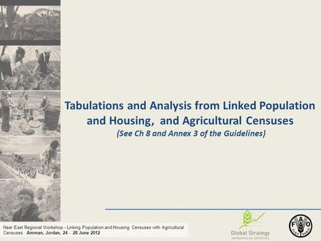 Near East Regional Workshop - Linking Population and Housing Censuses with Agricultural Censuses. Amman, Jordan, 24 - 28 June 2012 Tabulations and Analysis.