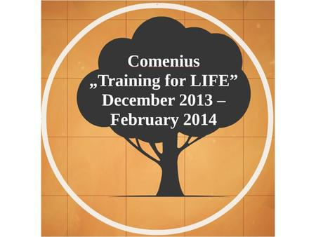 "Between 3rd and 8th December 2013, our school was the host of the 2nd project meeting of Comenius ""Training for LIFE"""