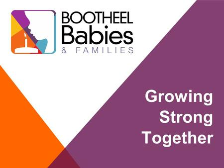 Growing Strong Together. 2 What is Bootheel Babies and Families Collective Impact In A Nutshell Role of Backbone Info/Data We Know To Date Grantees In.