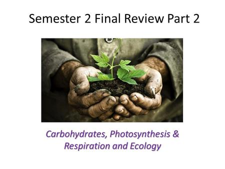Semester 2 Final Review Part 2 Carbohydrates, Photosynthesis & Respiration and Ecology.