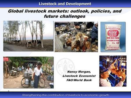 1 Global livestock markets: outlook, policies, and future challenges Nancy Morgan, Livestock Economist FAO/World Bank.