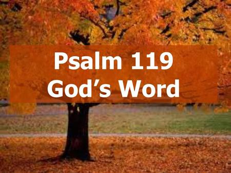 Psalm 119 God's Word.