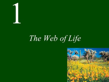1 The Web of Life. Chapter 1 The Web of Life CONCEPT 1.1 Events in the natural world are interconnected. CONCEPT 1.2 Ecology is the scientific study of.