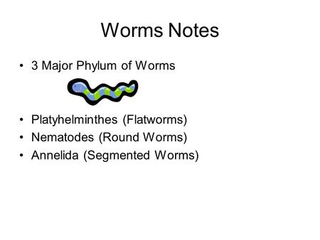 Worms Notes 3 Major Phylum of Worms Platyhelminthes (Flatworms) Nematodes (Round Worms) Annelida (Segmented Worms)