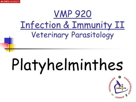 Platyhelminthes VMP 920 Infection & Immunity II Veterinary Parasitology.