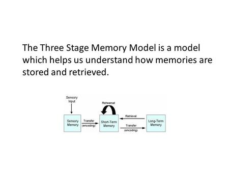 The Three Stage Memory Model is a model which helps us understand how memories are stored and retrieved.