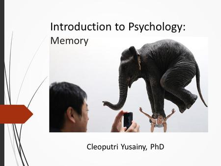 Introduction to Psychology: Memory Cleoputri Yusainy, PhD.