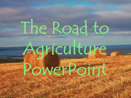 The Road to Agriculture PowerPoint. Before we were all farmers, all Homo sapiens were… Hunters and Gatherers.