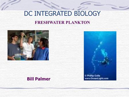 Bill Palmer DC INTEGRATED BIOLOGY FRESHWATER PLANKTON.