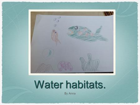 Water habitats. By Anna. I Chose Animals From A Pond.