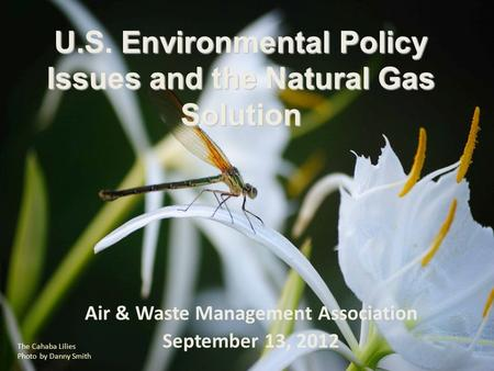 Air & Waste Management Association September 13, 2012 The Cahaba Lilies Photo by Danny Smith U.S. Environmental Policy Issues and the Natural Gas Solution.
