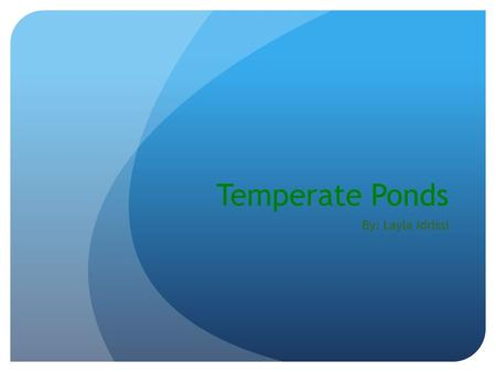 Temperate Ponds By: Layla Idrissi. What is a temperate pond? A temperate pond is a well-filtered pond. Many animals and plants live in a temperate pond.