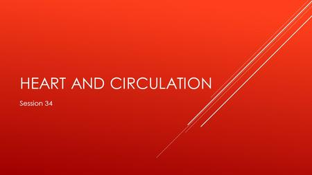 HEART AND CIRCULATION Session 34. OBJECTIVES  Describe the structure of the heart and its anatomical orientation (valves, muscles, tendinous cords, wall.