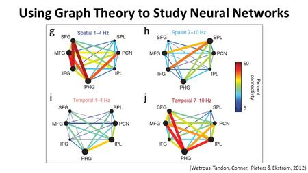 Using Graph Theory to Study Neural Networks (Watrous, Tandon, Conner, Pieters & Ekstrom, 2012)