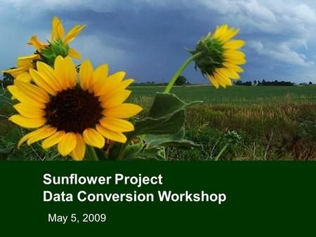 Sunflower Project Data Conversion Workshop May 5, 2009.