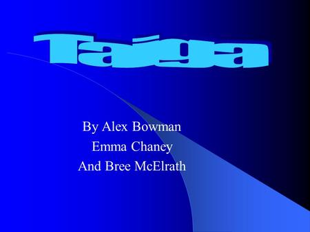 By Alex Bowman Emma Chaney And Bree McElrath. Taiga Characteristics Coniferous Forests.
