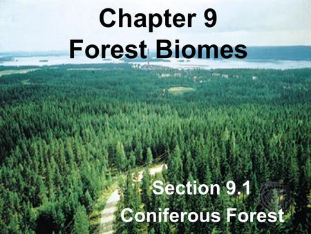 Section 9.1 Coniferous Forest