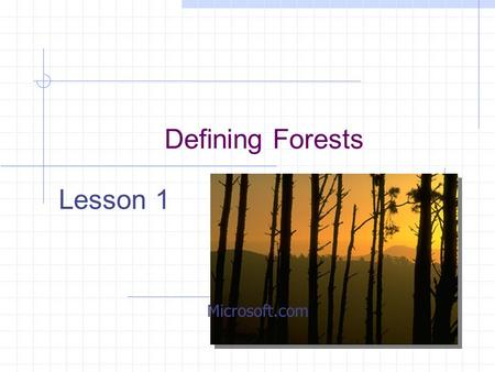 Defining Forests Lesson 1 Microsoft.com. Common Core/Next Generation Science Standards Addressed! HS-LS2-6.Evaluate the claims, evidence, and reasoning.