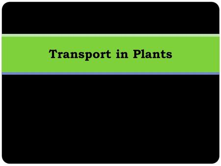 Transport in Plants. Learning Objectives Features of effective transport systems in plants. Nature of waste products and excretory mechanisms and systems.