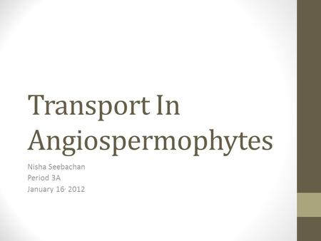 Transport In Angiospermophytes Nisha Seebachan Period 3A January 16, 2012.