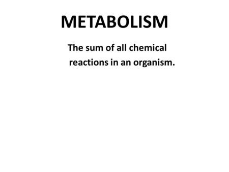 METABOLISM The sum of all chemical reactions in an organism.
