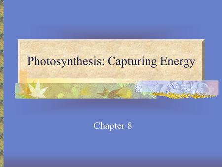 Photosynthesis: Capturing Energy Chapter 8. Light Composed of photons – packets of energy Visible light is a small part of the electromagnetic spectrum.