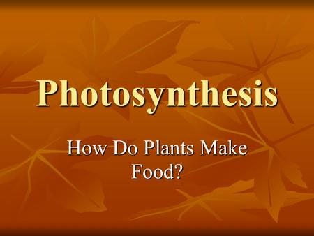 Photosynthesis How Do Plants Make Food?. Questions To Think About What happens inside plants when the sun is shining or when it is raining? What happens.
