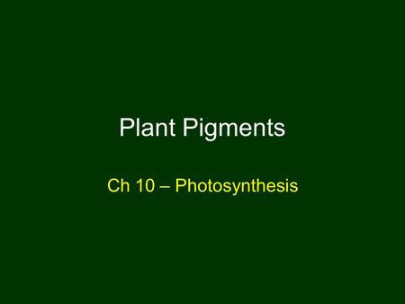 Plant Pigments Ch 10 – Photosynthesis. Autotrophs Photoautotrophs, chemoautotrophs.
