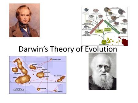 Darwin's Theory of Evolution. Historical Context (early 1800s) Aristotle, Judeo-Christian culture, book of Genesis… – The earth is only 6000 years old.