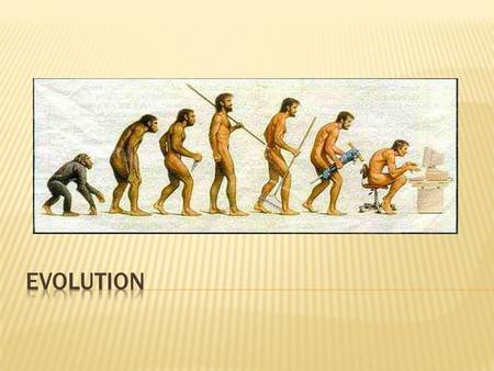  Any change in the genes of a population over time.