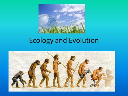 Image result for Ecology and Evolution