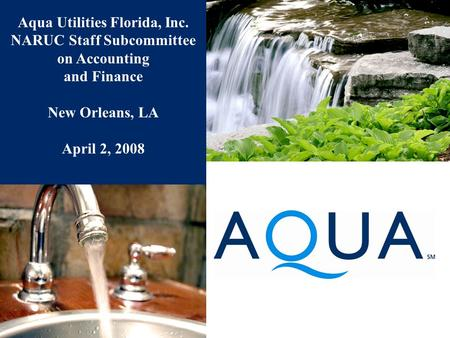 Aqua Utilities Florida, Inc. NARUC Staff Subcommittee on Accounting and Finance New Orleans, LA April 2, 2008.