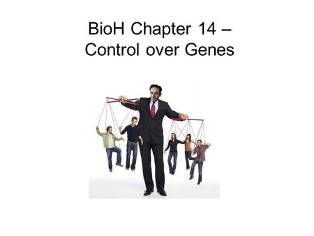 BioH Chapter 14 – Control over Genes. Control of Gene Expression Cells are selective about which genes they require This depends upon:  Cell type  Specific.